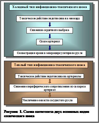 Схема патогенеза двух основных