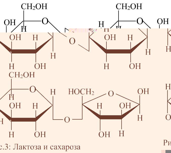 Дисахарид фото